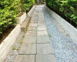 branch-environment-garden-green-450064